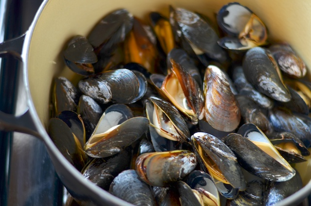 steamed-mussels