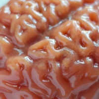 Tangy Halloween Brains