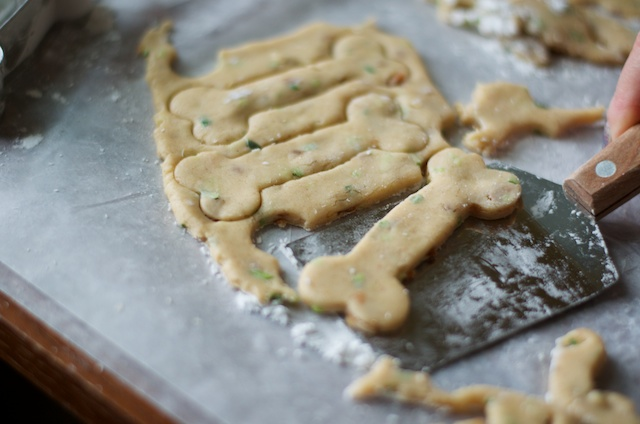 cutting out the dog biscuits