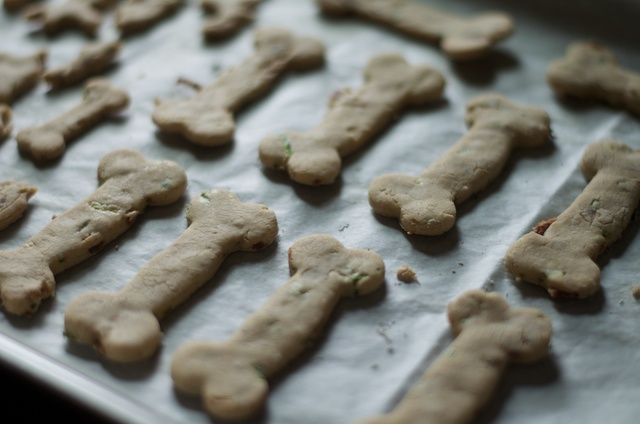 baked dog biscuits treats