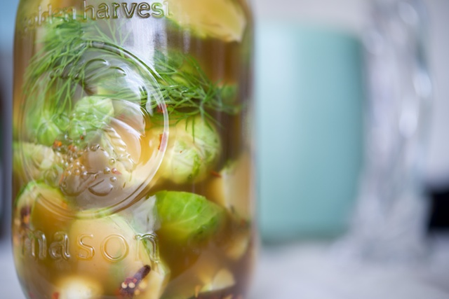 Spicy Pickled Brussels Sprouts Recipe