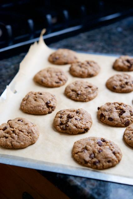 Chocolate Chip Almond Butter Cookies Recipe [paleo, primal, dessert]